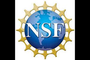 nsf-web-ft
