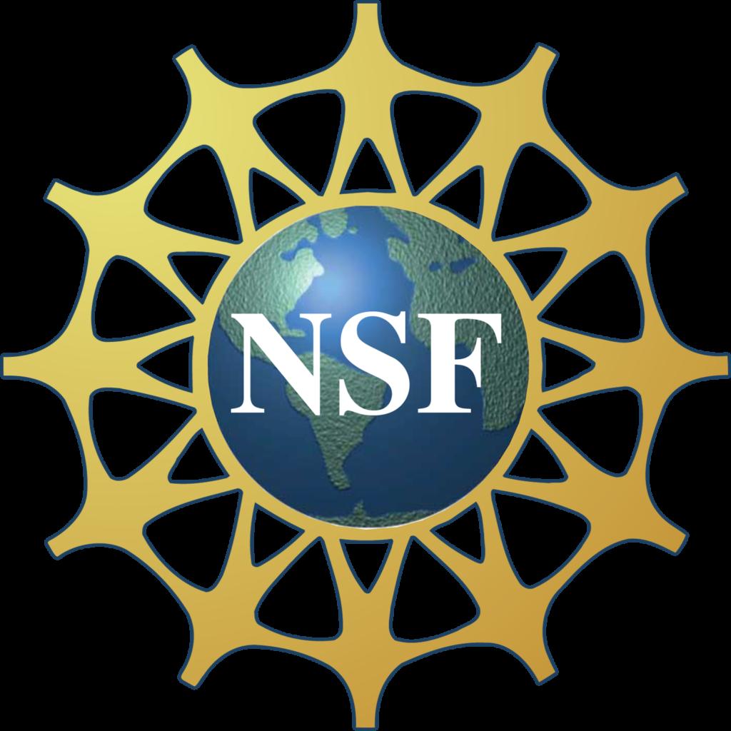 Noyce Scholarship Foundation