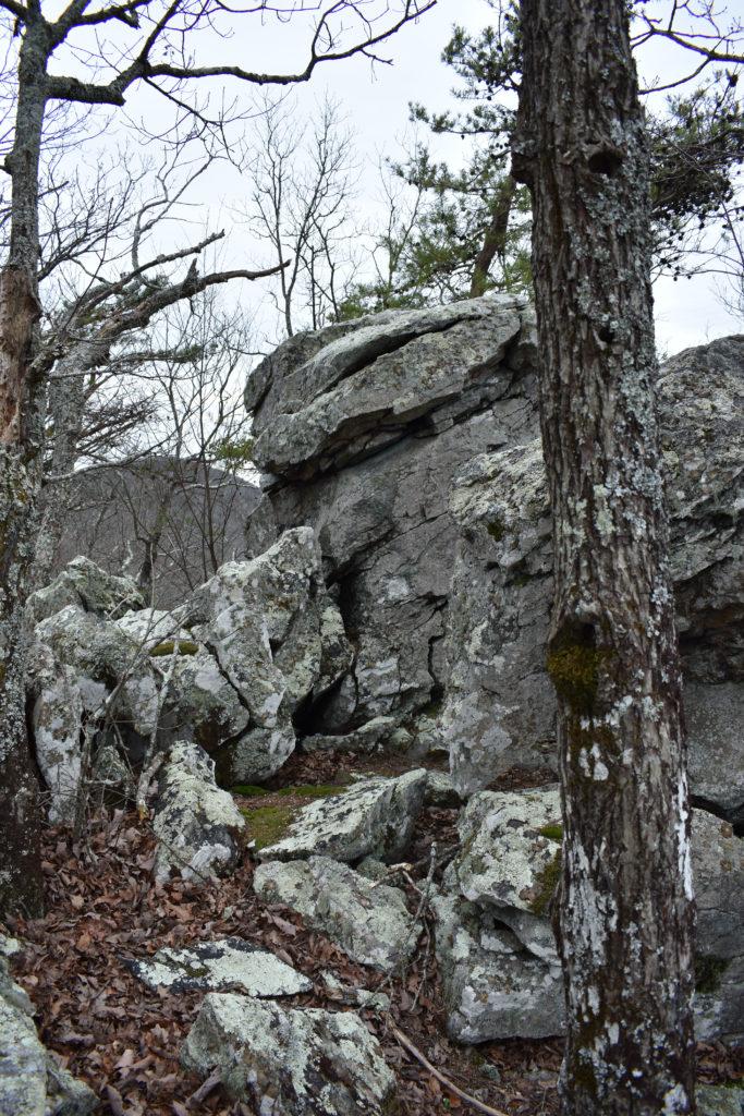 Taken on Pine Log Mountain.