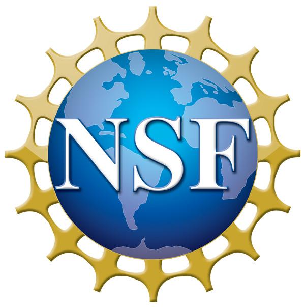 NSF_4-Color_bitmap_Logo-web